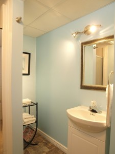 vacant home staging - Lower level bathroom